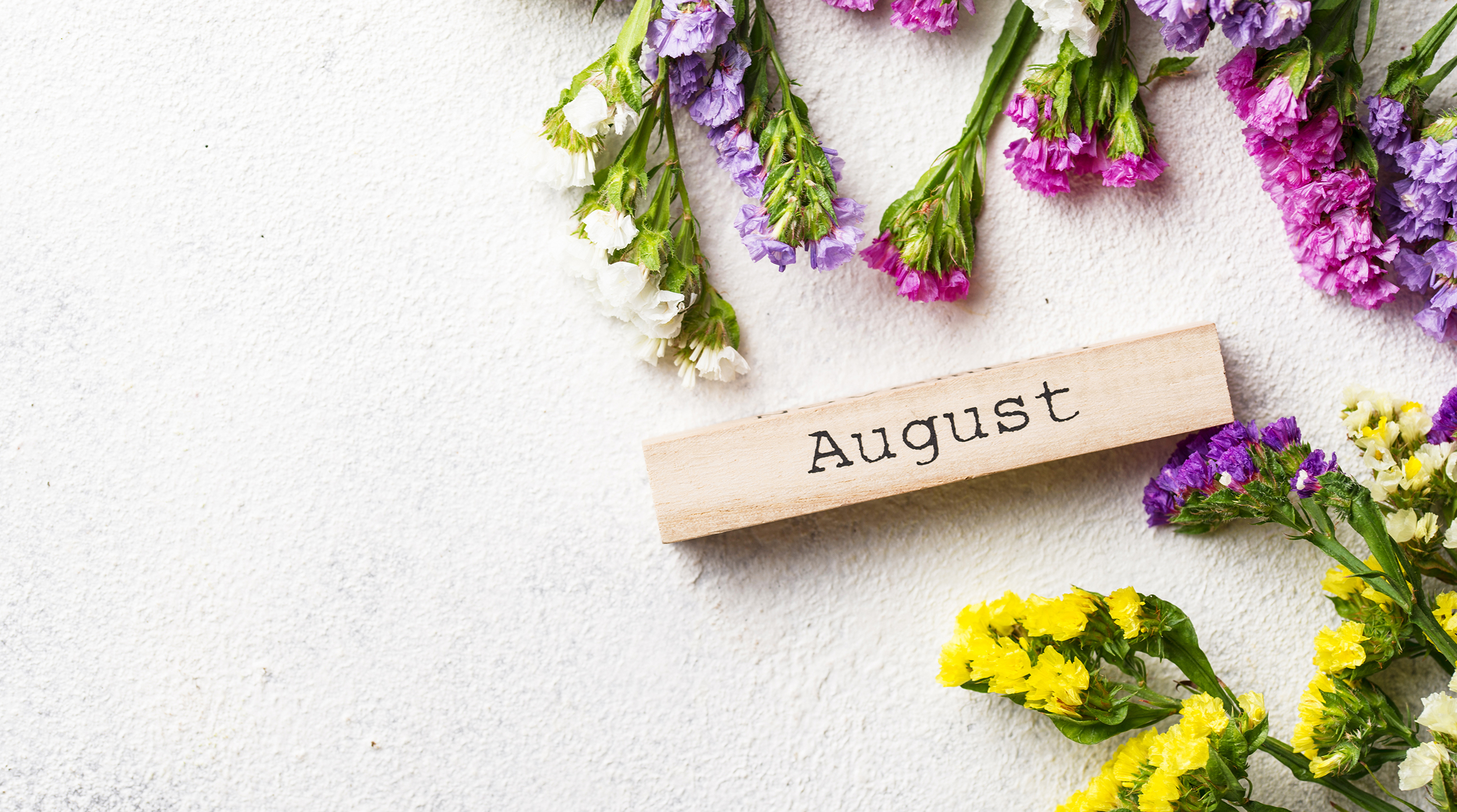 These are the social media events and holidays from the month of August.