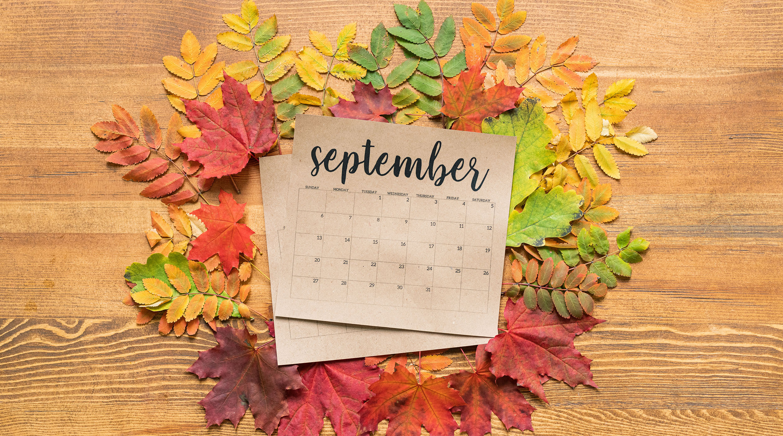 These are the social media events and holidays from the month of September.