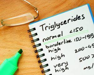 National Triglycerides Day